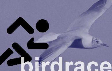 Birdrace logo
